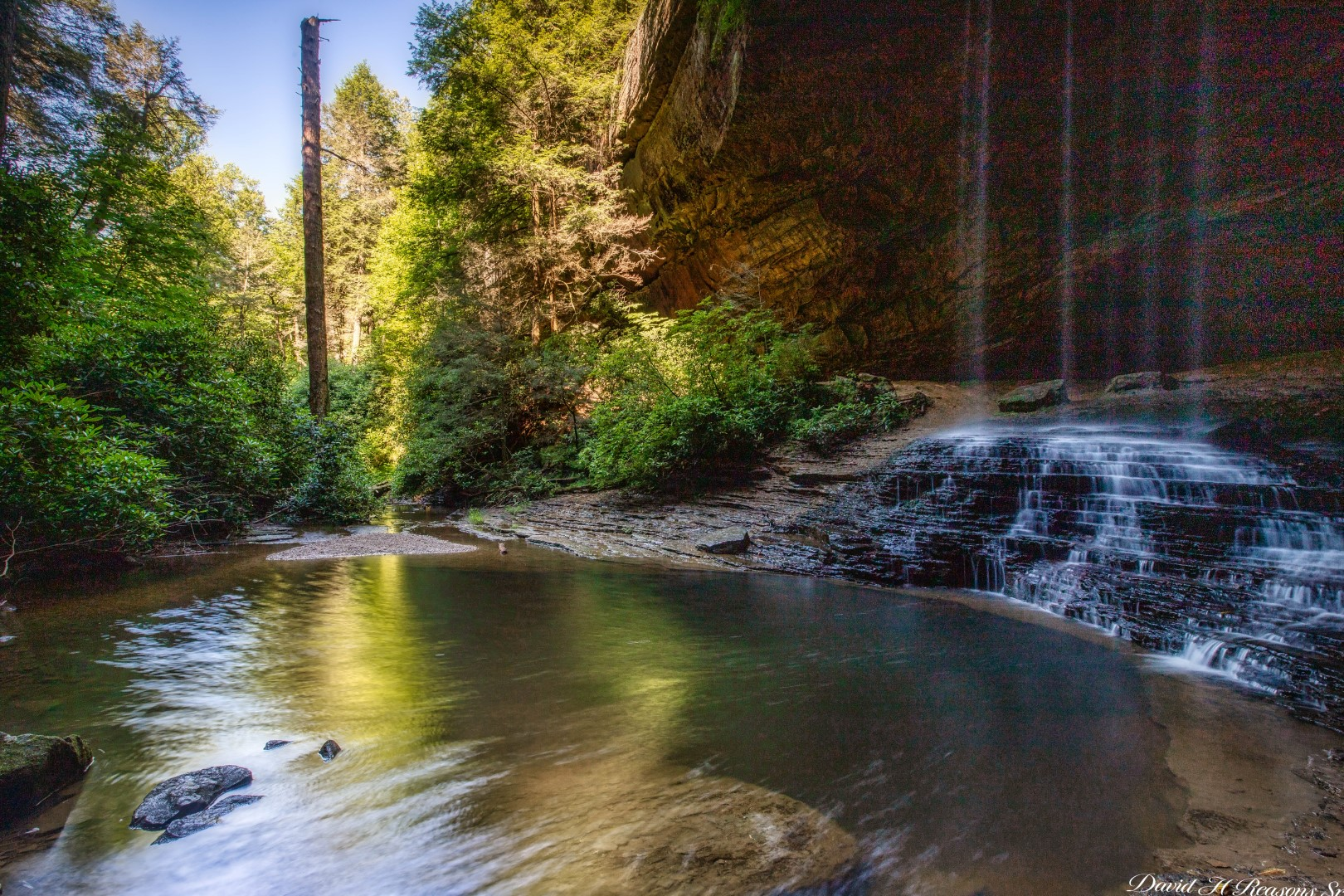 Looking down stream from the falls.  Colditz Cove State Natural Area