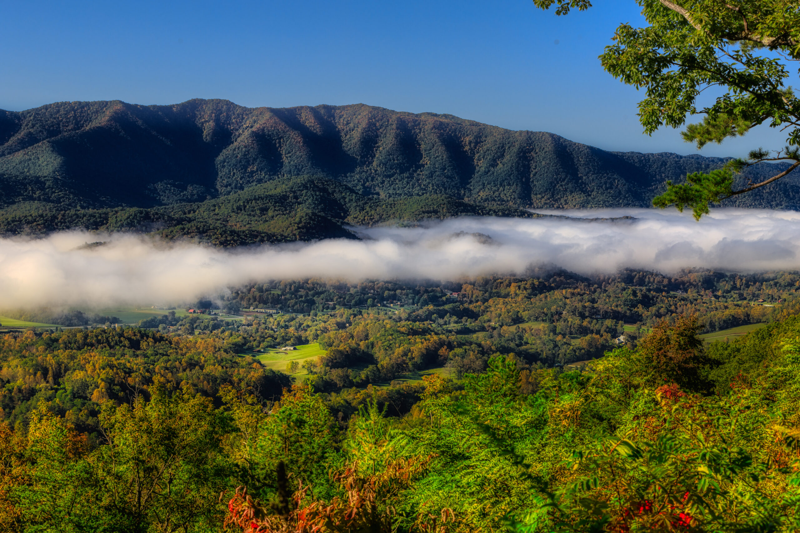 From the Foothills Parkway overlook.  Wears Valley
